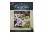 Постельное белье Casa de Lux (зеленая упаковка) N1, двойной (Пододеяльник 1 шт. 215х175 см. Простыня 1 шт. 215х180 см. Наволочка 2 шт. 70х70 см.)